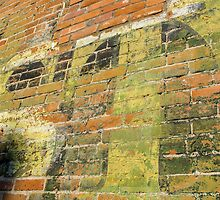 Brick Wall 5 by Photopa