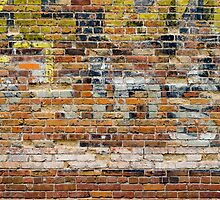 Brick Wall 4 by Photopa