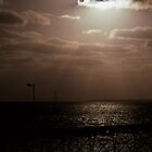 Total Solar Eclipse, Ceduna, South Australia 2002 by muz2142