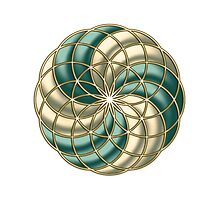 SEED OF LIFE, TUBE TORUS, SACRED GEOMETRY by nitty-gritty
