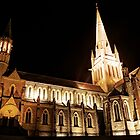Cathedral Night by Thomas Stayner