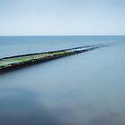 Blue, Blue Sea by Heidi Stewart