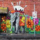 Collingwood Graffiti by Roz McQuillan