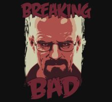 breaking bad by scipio