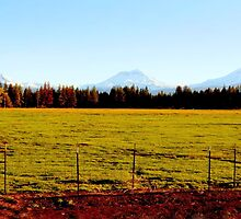 Three Sisters Mountain Range...Sisters, Oregon by trueblvr