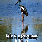 Life is a promise; fulfill it. by Julia Harwood