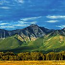 Mount Princeton Summer Sunset by Gregory J Summers