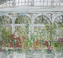 victorian conservatory by Fiona Mill