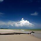 Beach by WendyM83