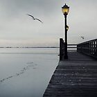 Ice and Pier - Long Island Winter Beach Scene by DangRabbit