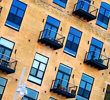 windows by Lynne Prestebak