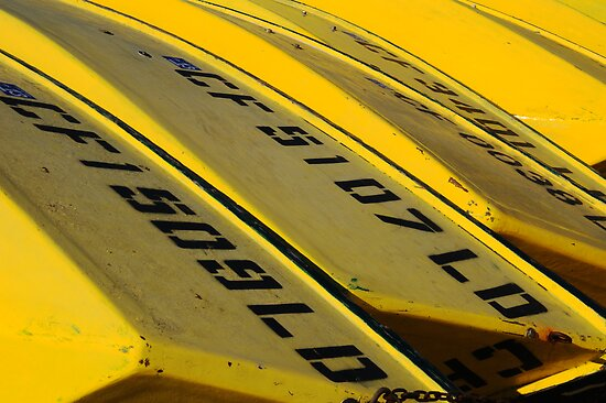 Yellow Boats For Rent by Bob Wall