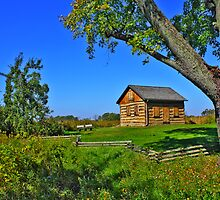 Gotten Log Cabin by EBArt