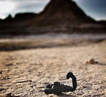 Scorpions everywhere. by bricksailboat