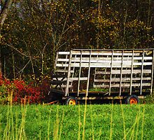 Zoomed in Hay Wagon by Nazareth