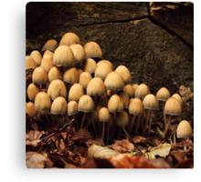 Forest Invasion Canvas Print