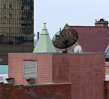 City Roof Tops by Joy  Rector