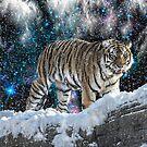 Siberian night by Alan Mattison