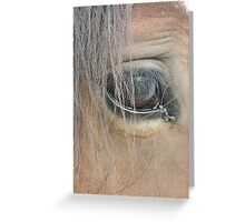 Trust the Animal and He will Trust You Greeting Card