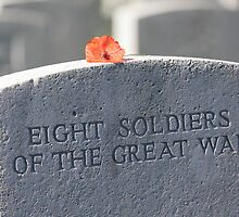 Unknown soldiers by Tony Roddam