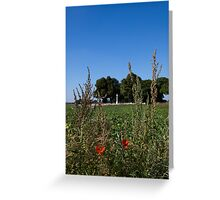 Poppies on the Somme Greeting Card