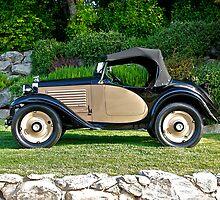 1931 American Austin 142 Hayes Roadster by DaveKoontz