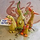 NO GENETICALLY MODIFIED FOODS! by Joni  Rae
