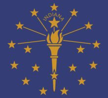 Indiana Flag by cadellin