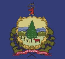 Vermont Flag by cadellin
