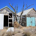 Myall Park, Walgett by SharronS