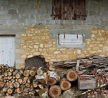 The Wood Pile by Adam Wain