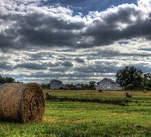 Fall At The Farm by Kyle Wilson