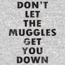 Don't Let The Muggles Get You Down - Harry Potter by robotplunger