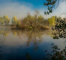 View to a Sunrise Reflection by Photopa