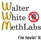 Breaking Bad - Walter White Methlabs - i'm loving it by sovietstan