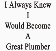 I Always Knew I Would Become A Great Plumber by supernova23