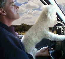 "☸•°*""˜SIT BACK AND RELAX - LET ME SHOW U HOW TO DRIVE CANINE STYLE--INCLUDED IS MY WRITTEN POEM""*°•☸ by ╰⊰✿ℒᵒᶹᵉ Bonita✿⊱╮ Lalonde✿⊱╮"