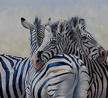 360 Degree Zebras by Pauline Sharp