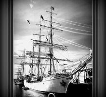 *TALL SHIPS/HOBART/TASMANIA 2013* by Ritchard Mifsud