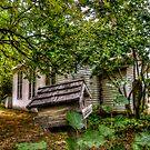 It's My House by Charles & Patricia   Harkins ~ Picture Oregon