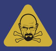 Danger Heisenberg by elPotto
