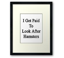 I Get Paid To Look After Hamsters Framed Print