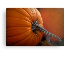 A Pumpkin For Thoreauing Metal Print