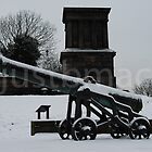 Calton Hill Cannon and Playfair Monument in the snow by justbmac