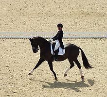 Dressage II by Ludwig Wagner