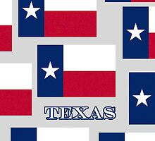 Smartphone Case - State Flag of Texas V by Mark Podger
