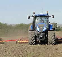 389 Horses Sowing Wheat by Barrie Woodward