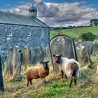 The Flock - Old St Stephen's Church by © Steve H Clark