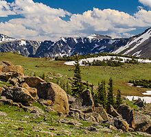 Rocky Mountains and Grassy Valley by Photopa