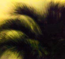 Midnight Palm by njordphoto